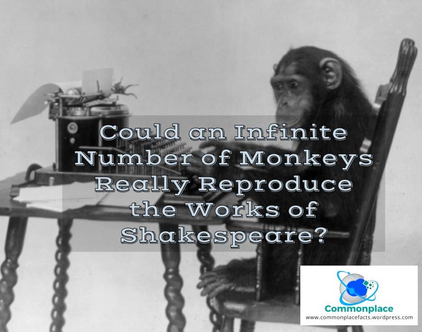 #InfiniteMonkeyTheorem #monkeys #infiniteMonkeys #Shakespeare