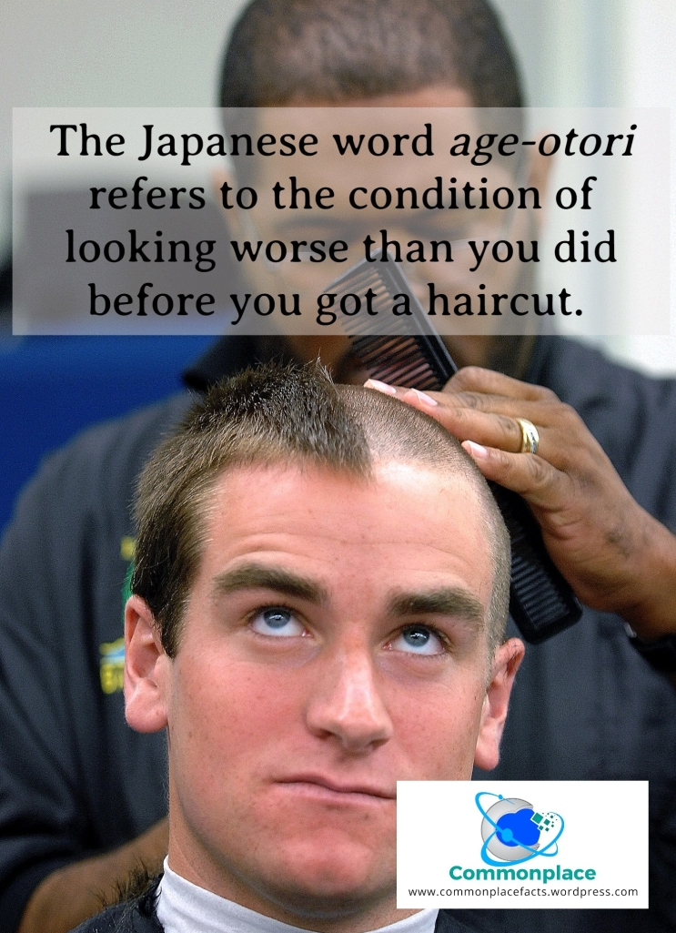 #languages #wordsweneed #haircuts