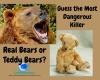 #bears #toys #TeddyBears #deaths #productdeaths #animaldeaths