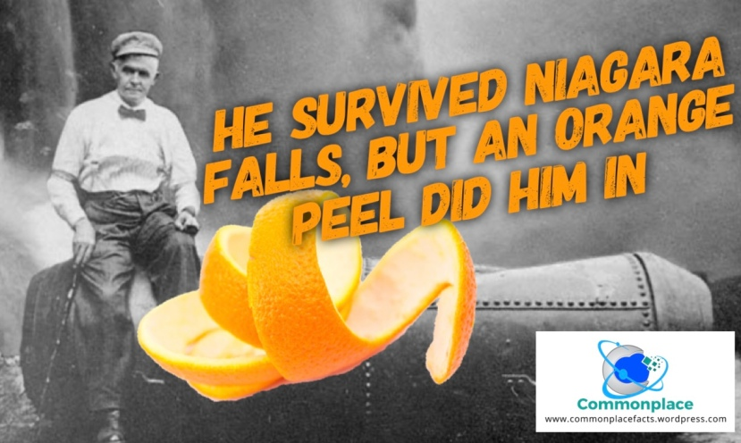 Bobby Leach Niagara Falls Orange Peel