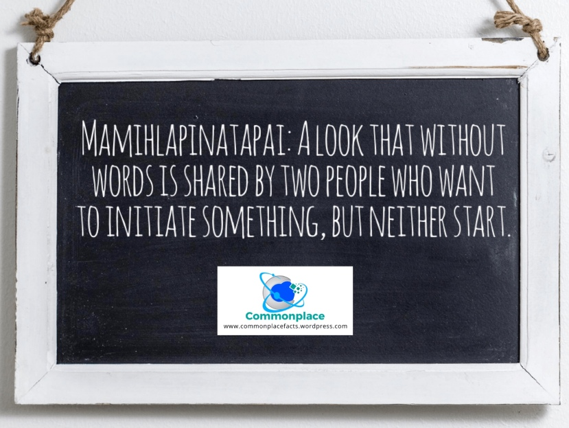 Mamihlapinatapai words languages Yaghan Guinness World Records