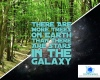 #trees #nature #stars #astronomy