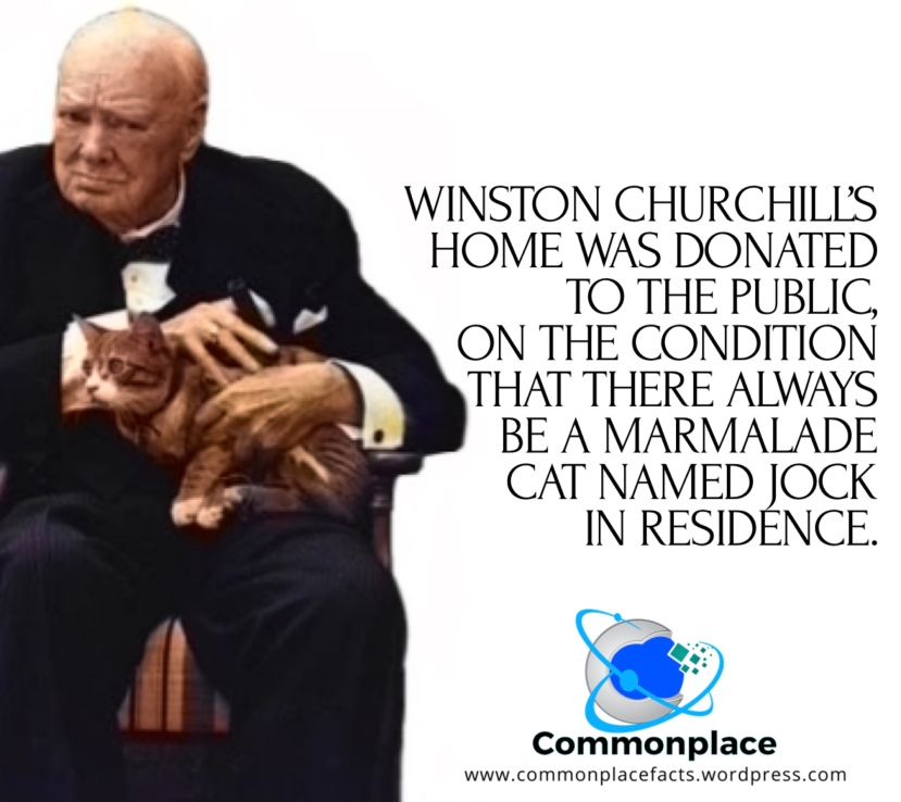 Winston Churchill's Home Was Donated to the Public, on the Condition that there always be a marmalade cat named Jock in residence
