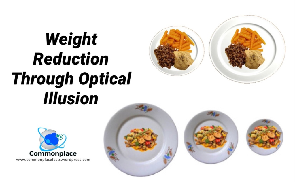 Delboeuf illusion  Weight reduction thought optical illusion