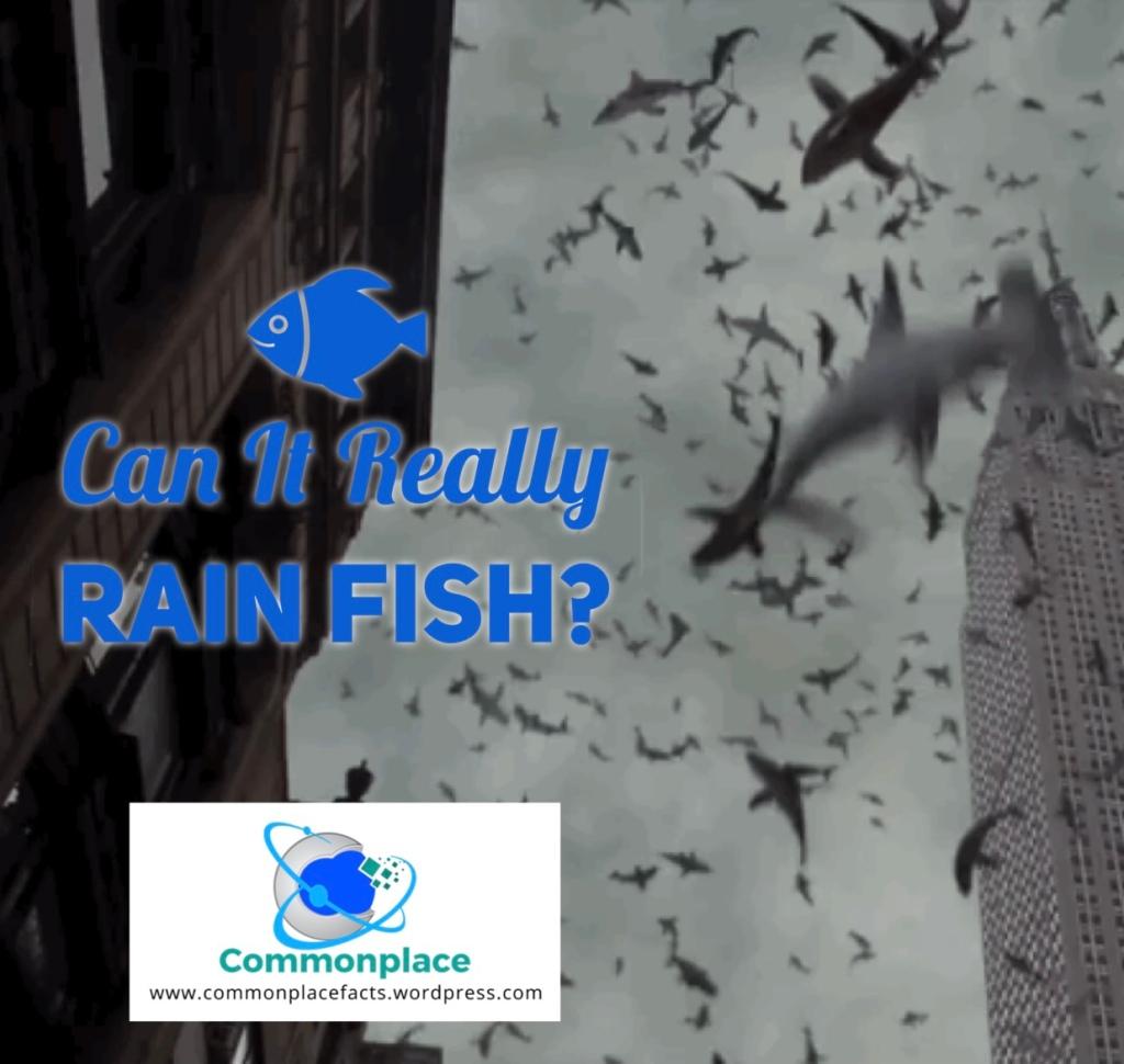 Can it Really Rain Fish?