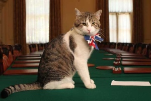 Larry, Chief Mouser to the Cabinet Office