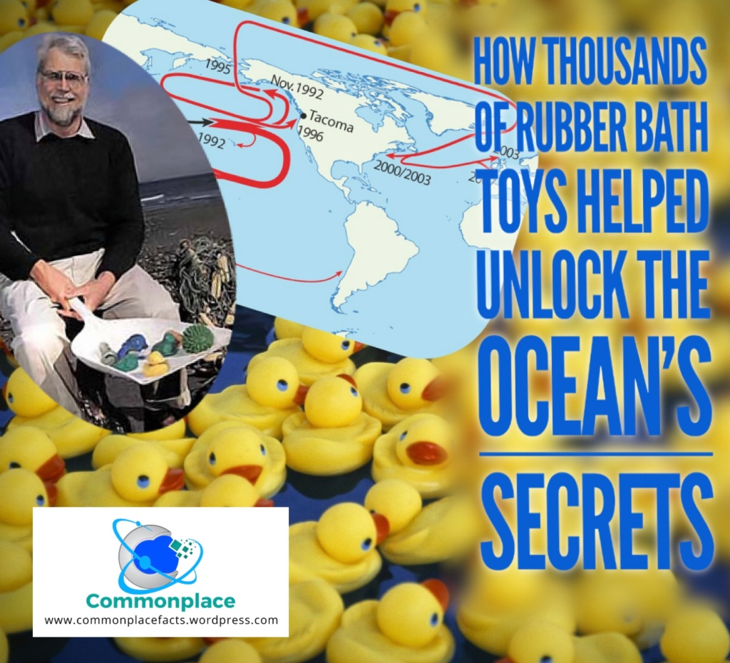 How Thousands of Rubber Bath Toys Helped Us Understand the Ocean